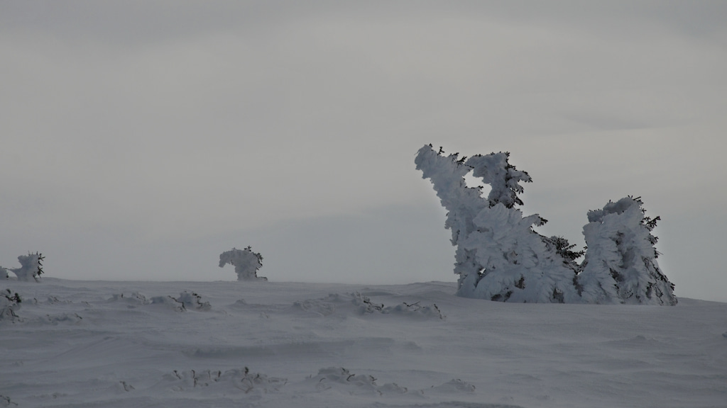 lodowe-smoki-w-drodze-na-szyszak-wielki