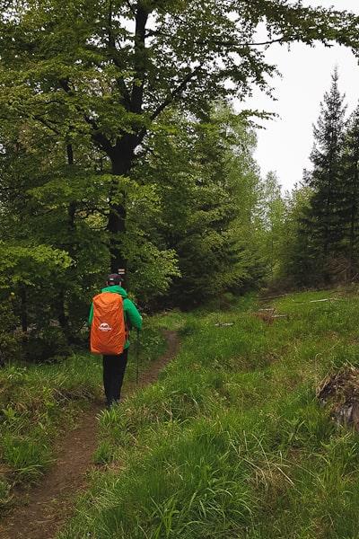 Ścieżka na zejściu z Jawornika Wielkiego