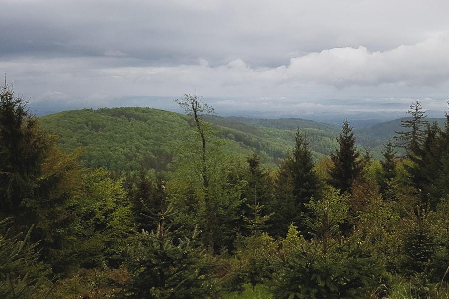 gss-dzien-5-trasa-zloty-stok-ladek-zdroj-widok-z-podejscia-na-jawornik-wielki
