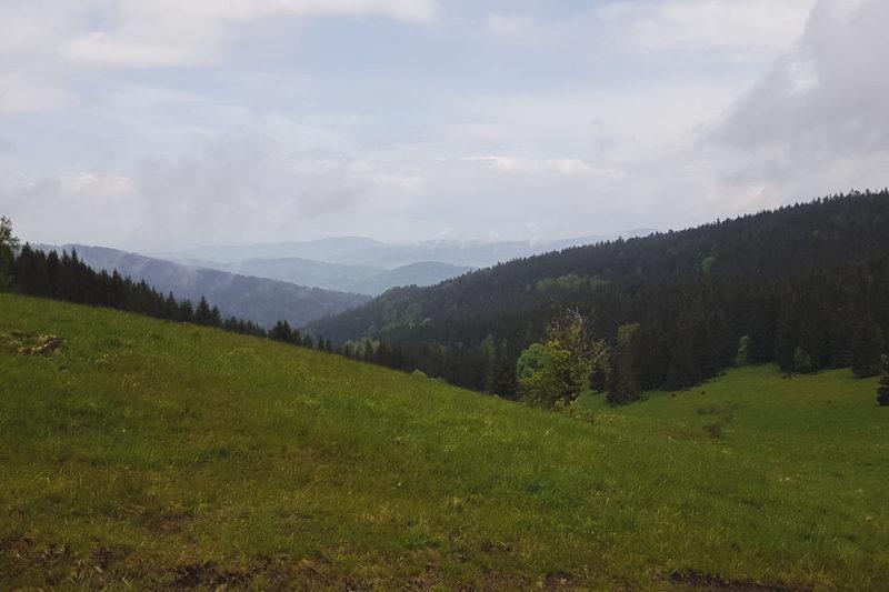 GSS dzień 6. Trasa: Lądek-Zdrój – Międzygórze