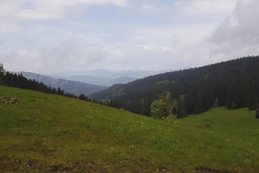 Przełęcz Puchaczówka - punkt widkowy