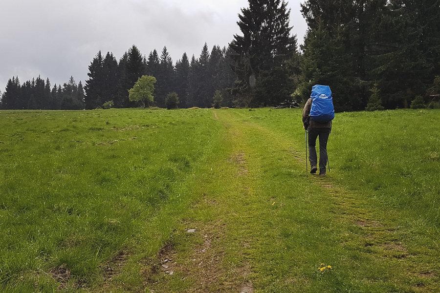 GSS dzień 6. Trasa: Lądek-Zdrój - Międzygórze. Wilczyniec