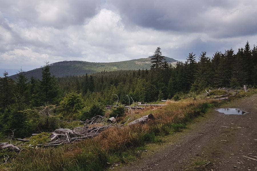 Stoki Czarnej Góry