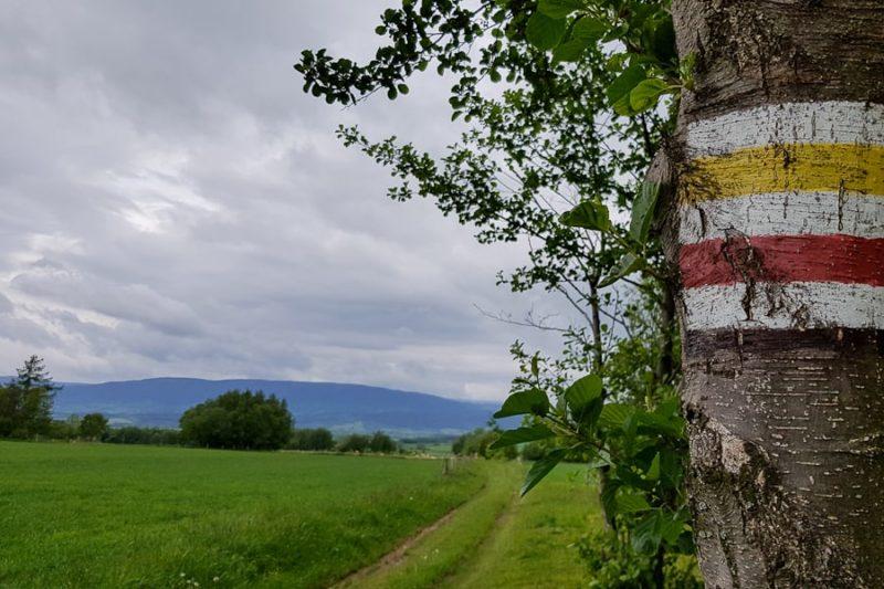 GSS dzień 7. Trasa: Międzygórze – Spalona