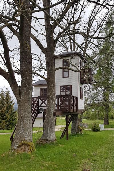 Lasówka - domek na drzewie