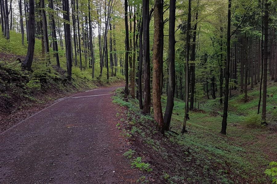 Zejście do Podgórza