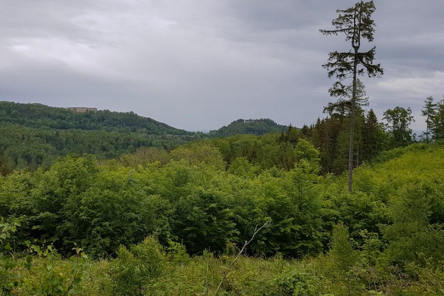 gss-dzien-11-trasa-slupiec-zygmuntowka-widok-na-fort-ostrog-twierdza-srebrna-gora-dolny-slask