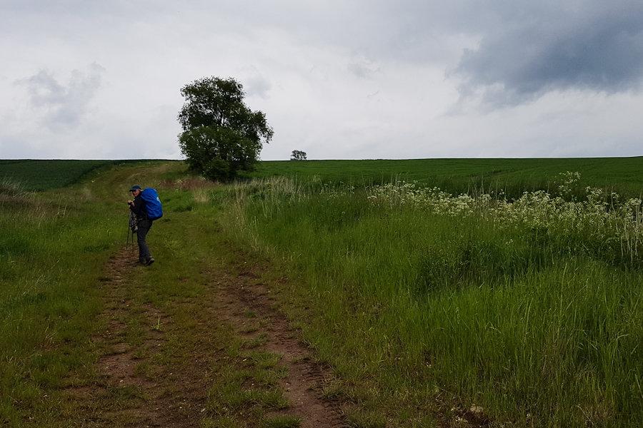 dzien-10-trasa-szczeliniec-nowa-huta-widok-droga-polna-za-wambierzycami