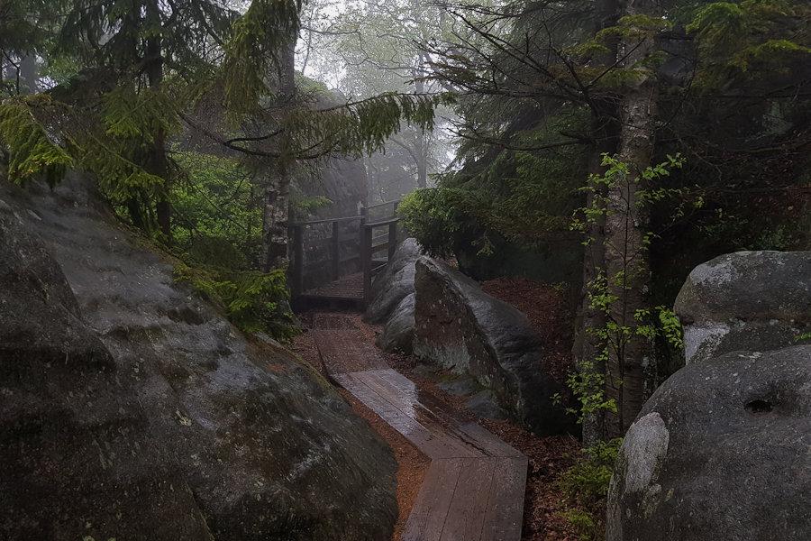 4-gss-dzien-10-labirynt-skalny-szczeliniec-dolny-slask-park-narodowy-gor-stolowych