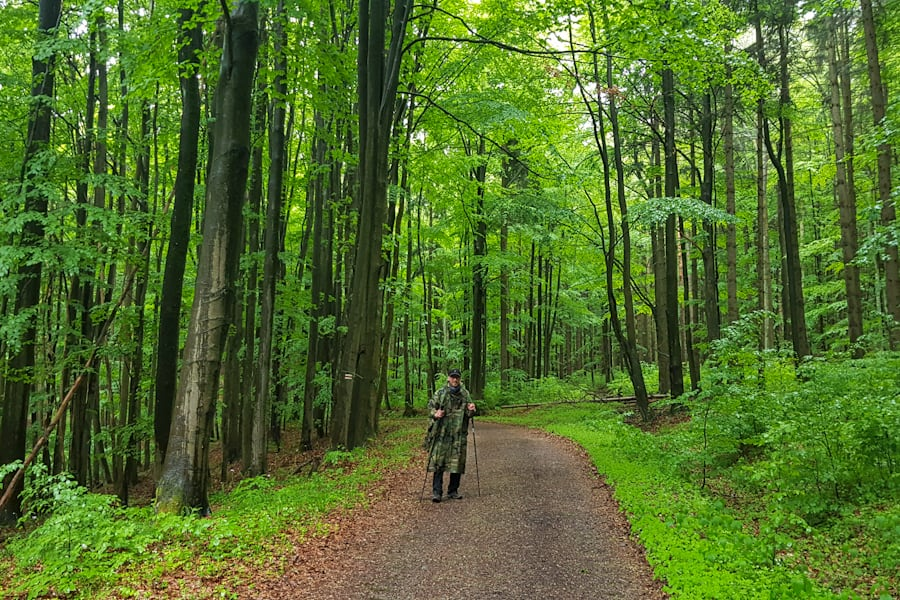 gss-dzien-10-trasa-szczeliniec-slupiec-zielony-las