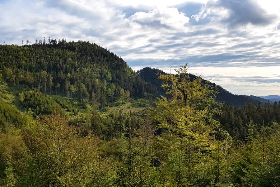 szlak-na-bukowiec-widok-na-wlostowa-kostrzyne-suchawe-gory-kamienne-gory-suche