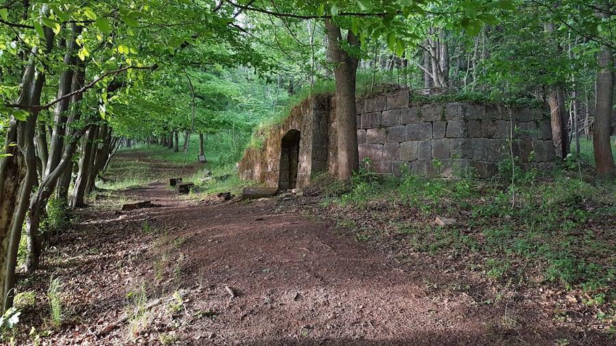 sokolowsko-dawny-cmentarz