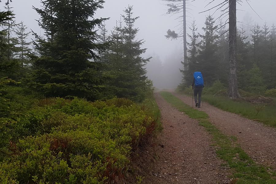 gss-dzien-13-w-drodze-na-lesista-wielka-gory-kamienne-dolny-slask-szlak-dlugodystansowy
