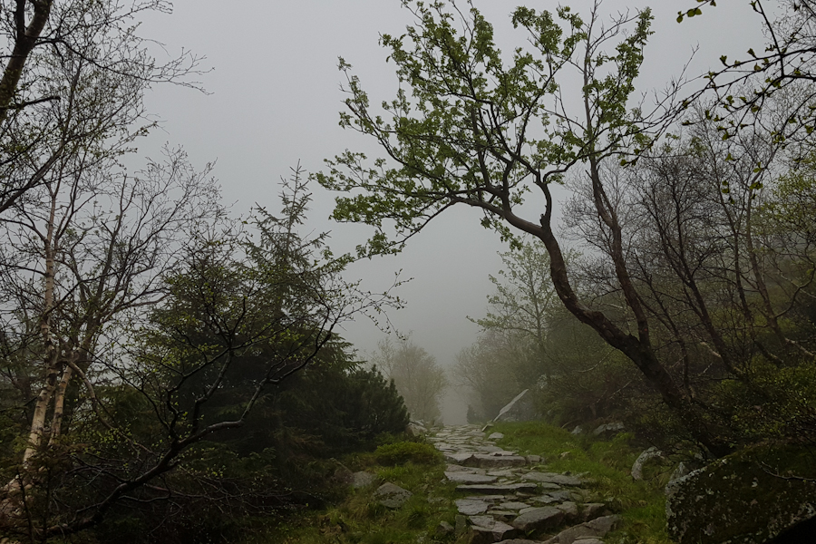 gss-dzien-15-21-kociol-lomniczki-karkonosze-karkonoski-park-narodowy-sudety-zachodnie-szlak-dlugodystansowy