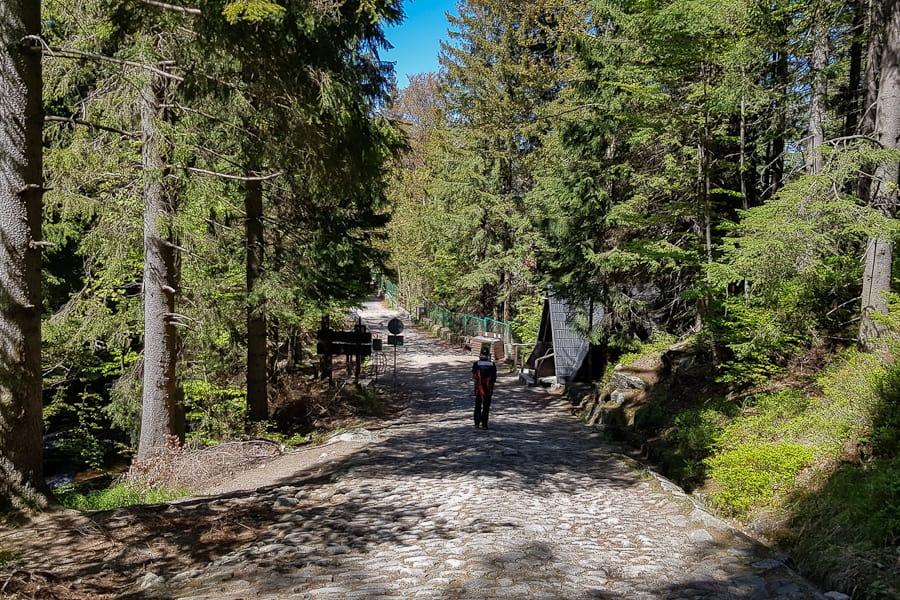 gss-dzien-17-24--karkonosze-karkonoski-park-narodowy-dolny-slask